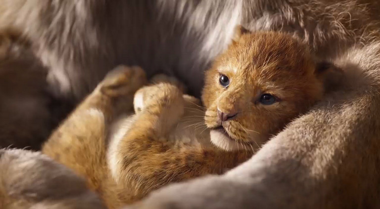 Lion King: First Trailer for Realverfilmung